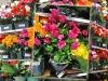 grossiste destockage  objets-decoration Palettes fleurs artificie ...